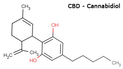 cbd-cannabidiol for anxiety